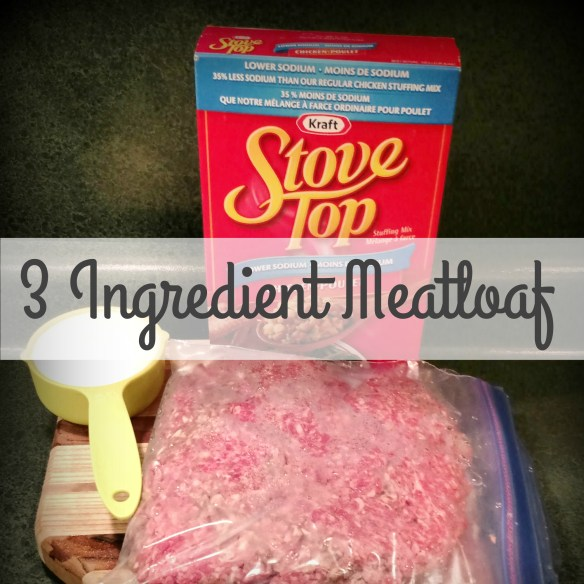 3 Ingredient MeatLoaf (2 Minute Prep, 1 Hour Bake Time)