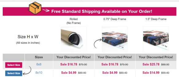 Affordable Museum-Quality Canvas Prints with Simple Canvas Prints!