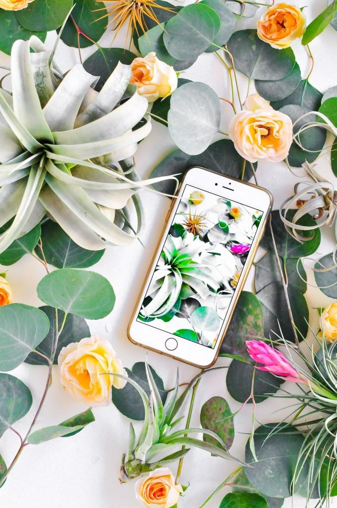 Botanical Wallpaper Download via @theproperblog