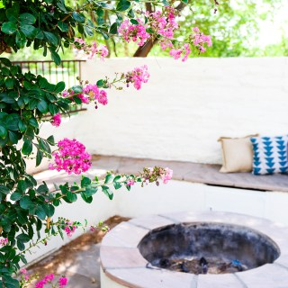 Back yard outdoor fire pit in Arizona with greenery and a white block wall in the background