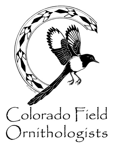 Logo-CFO