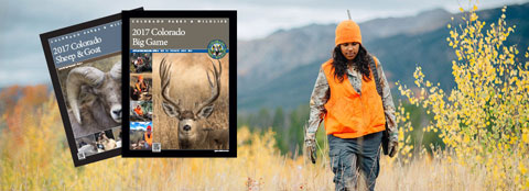 Colorado Parks and Wildlife Courtesy Photo