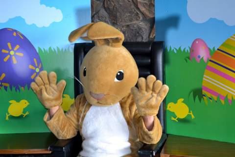 It's the Rabbit
