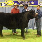 2017 NWSS Catch-A-Calf Final Results Released