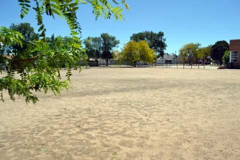 Future Site of a Grassy Playground