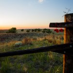 Sand Creek Massacre Observes 154th Year at National Historic Site