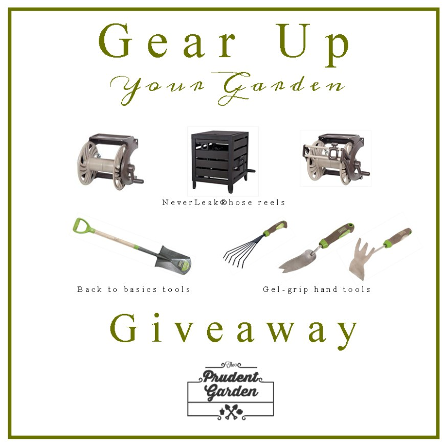 giveawaygraphicnew
