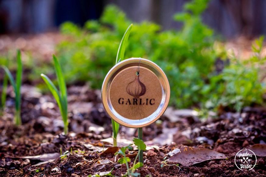 Mason Jar Lid Plant Label