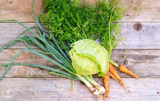 Spring Garden Coleslaw