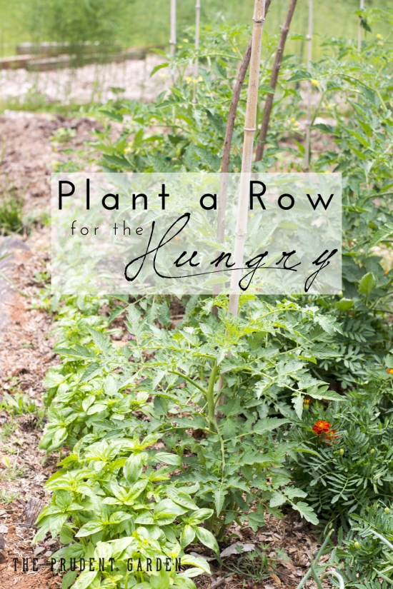 If you have the problem of growing too much in your vegetable garden, consider sharing your harvest. Put your extra to good use, plant a row for the hungry.