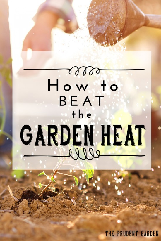 How To Beat The Garden Heat