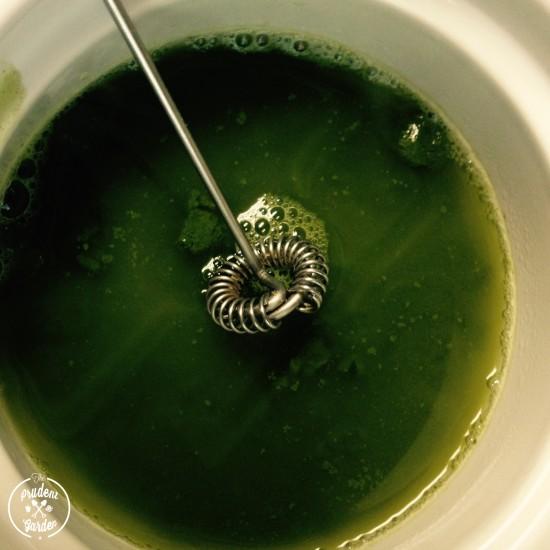 Mint Matcha Latte