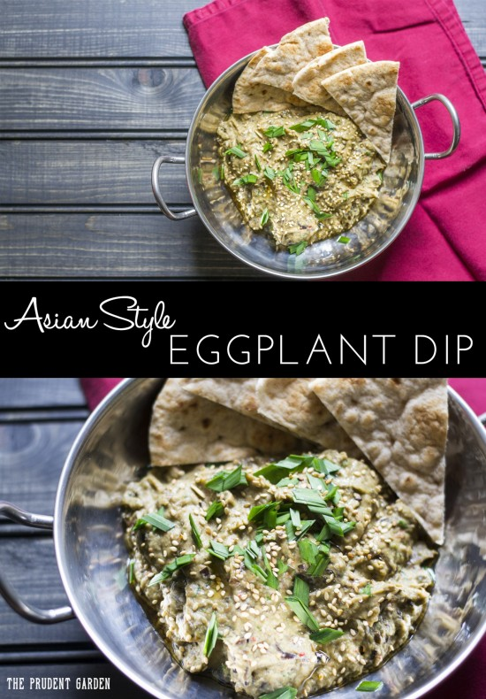 Asian Style Eggplant Dip