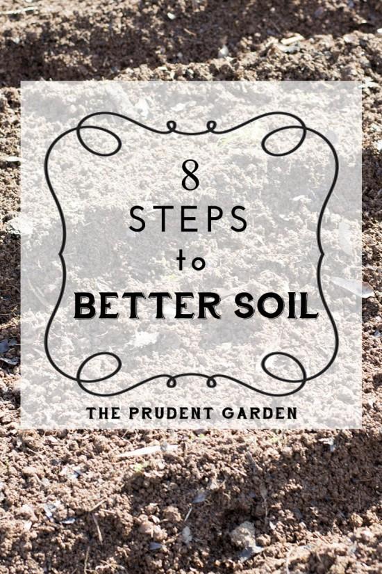 8 Steps To Better Soil