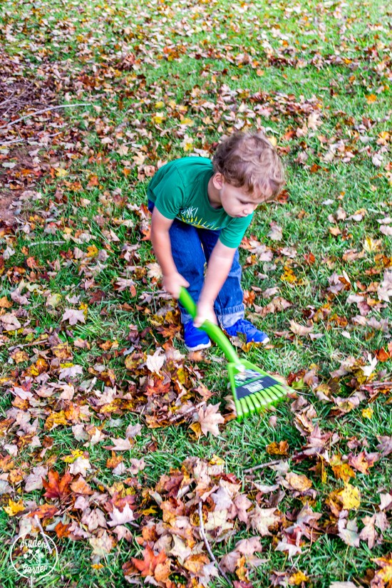 Check out Ames Tools new twist on an old standard among fall yard work tools. Cleaning up fall leaves gets faster and easier each year with new rake tech.