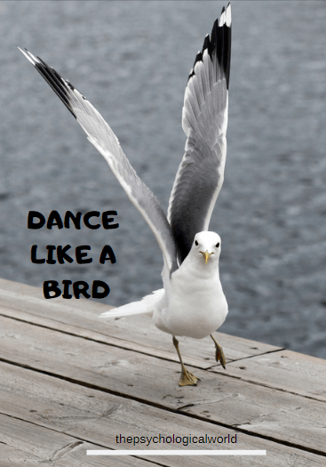 Dance like a bird