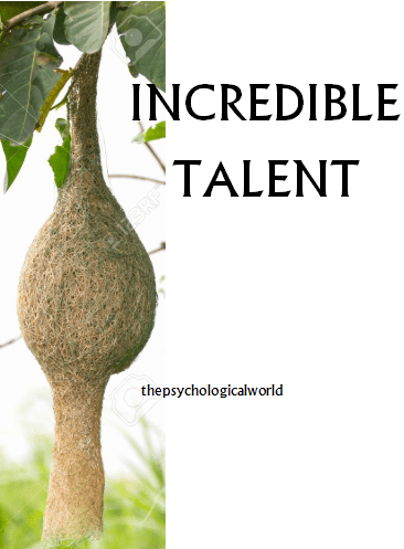 Incredible Talent