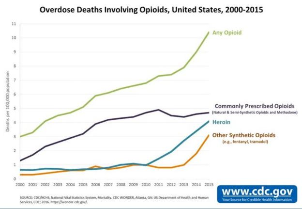 Inside the Opioid Crisis - The Psychology Times