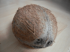 A face in a coconut