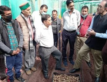केन्द्रीय कृषि मंत्रालय के अतिरिक्त सचिव डॉ अभिलक्ष लिखी ने हिमाचल का दौरा किया, किसानों से की लिलियम फूलों की खेती पर चर्चा