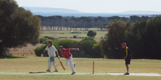 Flinders Island cricket