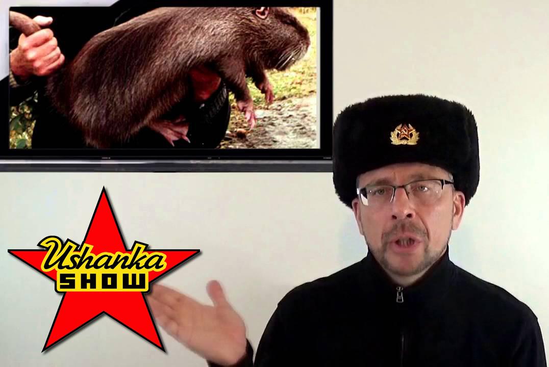 QR Recommendations: Ushanka Show