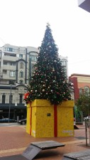 The only evidence of festive cheer in Welly