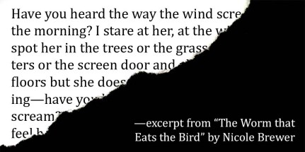 excerpt from The Worm that Eats the Bird by Nicole Brewer
