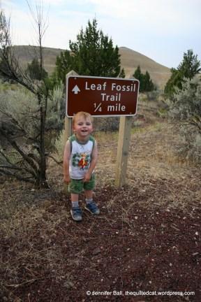 Leaf Fossil Trail, age 3