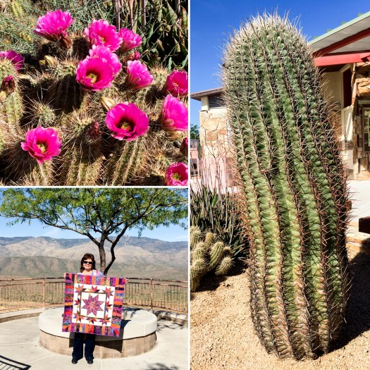 collage of cactus and flowers and a quilt in the wild