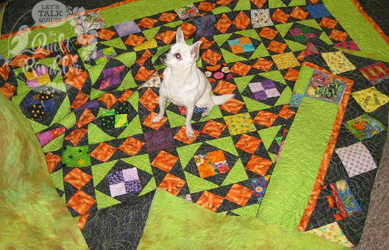 Pixxie, The Professional Quilt Model, sitting on My Dangling Carrot quilt by Karen E Overton