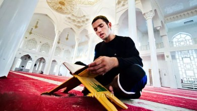 online quran classes for adults