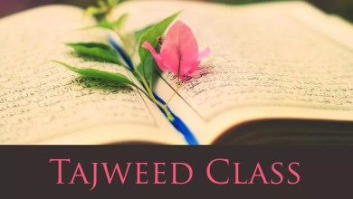 Quran online with Tajweed