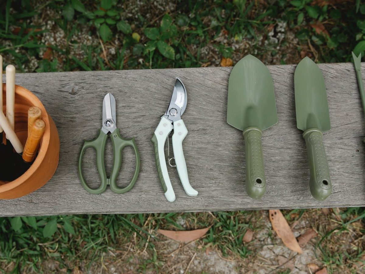 gardening tools on wooden bench in yard