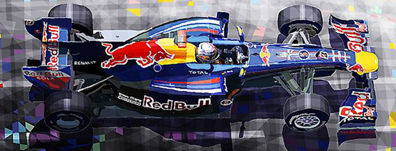 2010 Red Bull RB6 Vettel/Motorsport art by Yuriy Shevchuk