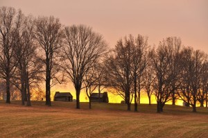 Sunset Valley Forge