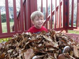 I really love piles of leaves!
