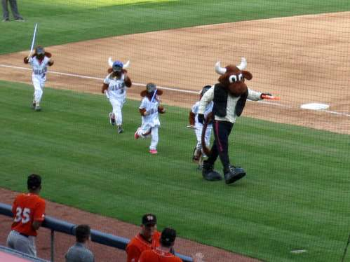 Here are some young fans chasing Wooly Bull/Han Solo with light sabers. Maybe one day I'll get to run around on the field!