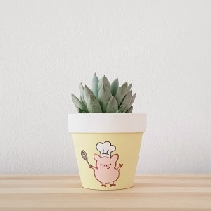 Peckish Pig Pot with succulent
