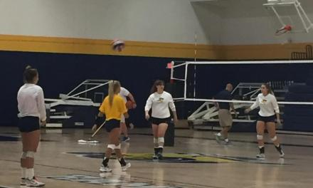 Volleyball team returns home this weekend