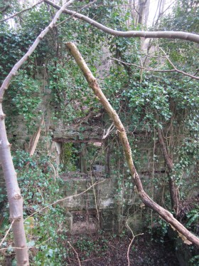 The spooky ruined mill