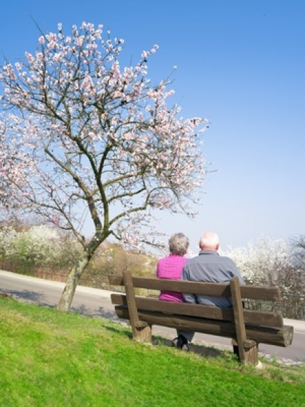 zwei ältere Menschen auf der Parkbank, Älteres Paar, Beziehungskrise