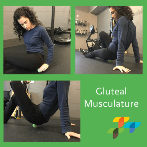 gluteal-exercise-physical-therapy