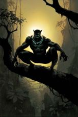 Black Panther Vol 6 #14 Incentive Andrew Robinson Variant