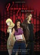 VA graphic novel