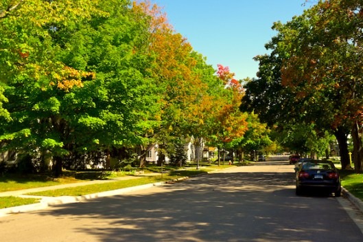 Color Season, Traverse City