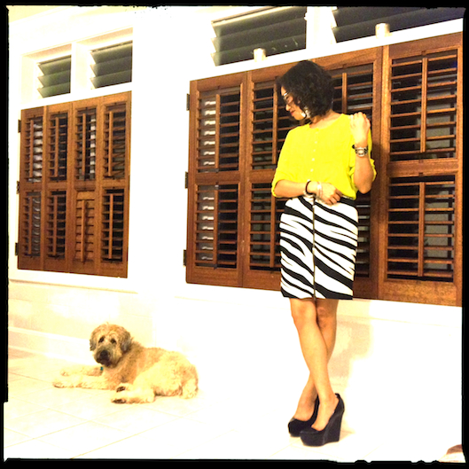 Hawaii Fashion Style, Theyskens Theory wedge heel knock offs, Neon Yellow Shirt, Zebra Print Skirt