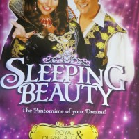 Review – Sleeping Beauty, Derngate, Northampton, 12th December 2013