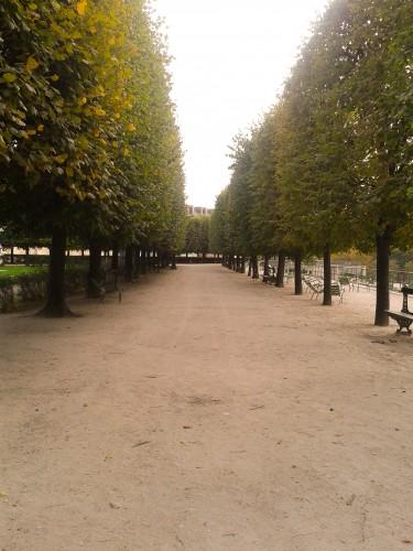 Pathway in Jardin des Tuileries