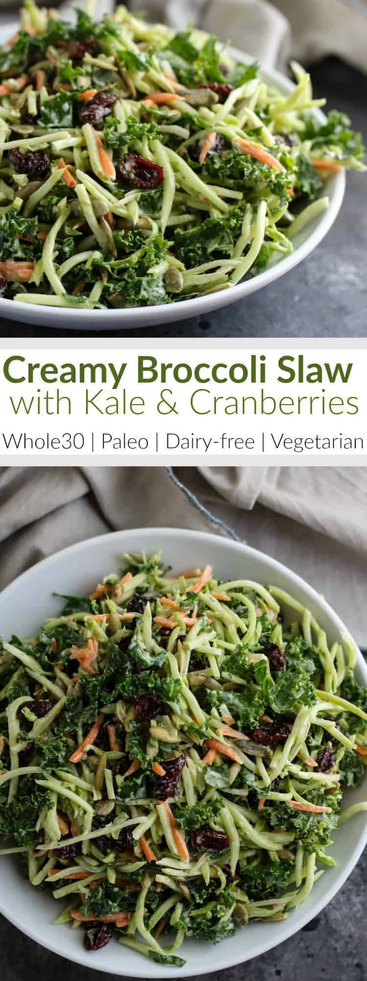 recipe: broccoli slaw salad paleo [33]